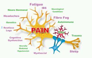 Fibro Symptoms 1