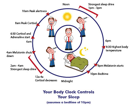 Body CLOCK Controls