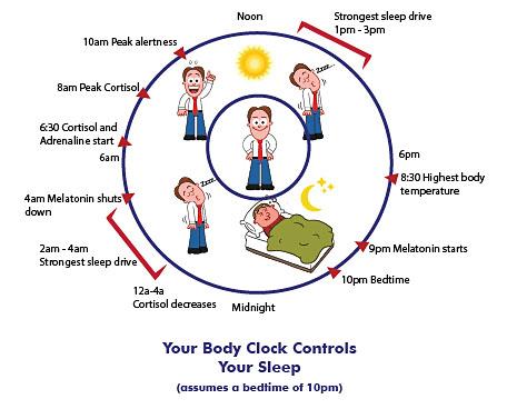 Body CLOCK Controls