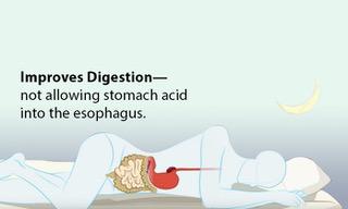 3_Digestion_edited