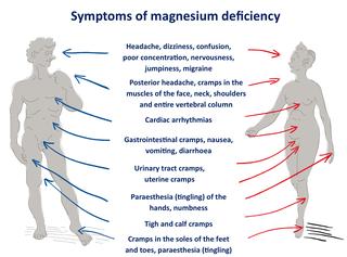 Magnesium-Deficiency1