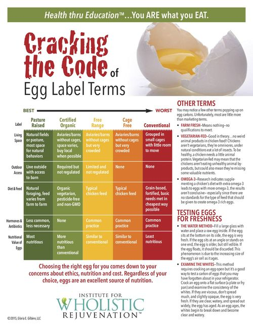 4-15 Cracking the Egg Code