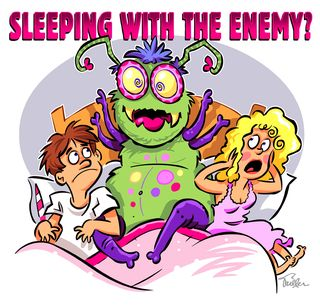 Dust-Mites_Sleeping with the Enemy